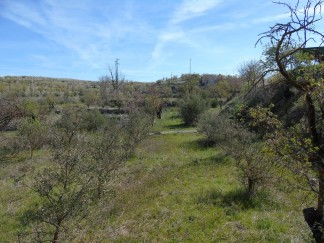 Land for sale in Oria
